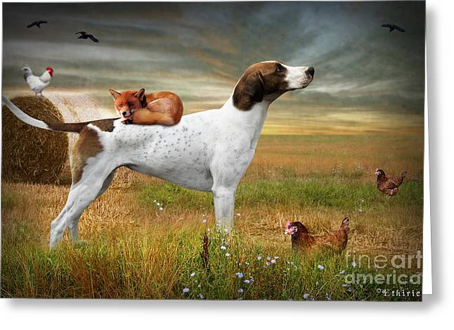 Fox And Hound Greeting Card by Ethiriel  Photography