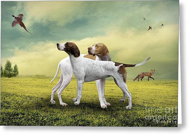 Two Hounds Greeting Cards - Fox and Hounds Greeting Card by Ethiriel  Photography