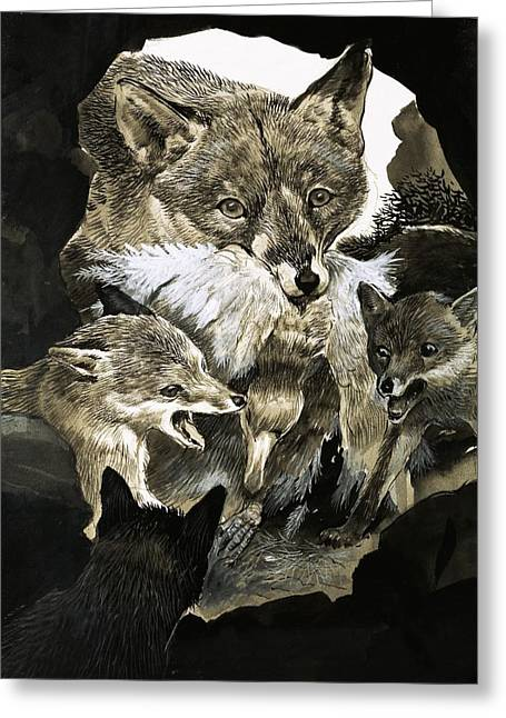 Fox Greeting Cards - Fox delivering food to its cubs  Greeting Card by English School