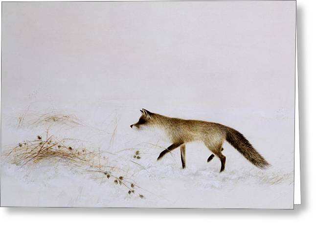 Stalking Greeting Cards - Fox in Snow Greeting Card by Jane Neville