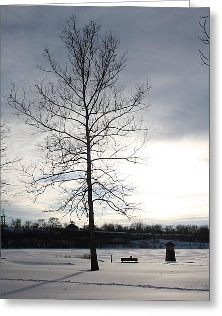 Snowpocalypse Greeting Cards - Fox River Greeting Card by Angela Siener