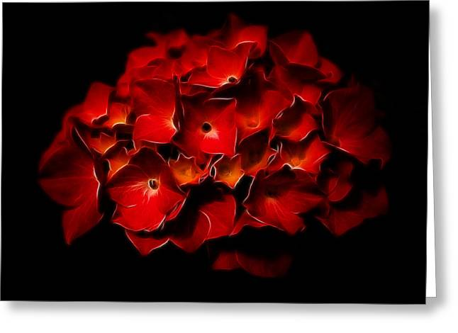 Fractalius Red Hydrangea Greeting Card by Jay Lethbridge