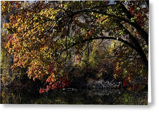 Transformations Digital Greeting Cards - Framed by Light Greeting Card by Edward Kreis