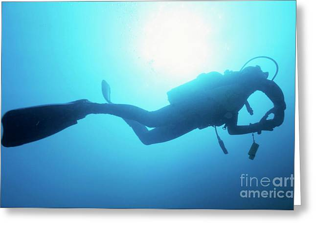 Scuba Diving Photographs Greeting Cards - France marseille diver silhouette from below Greeting Card by Sami Sarkis