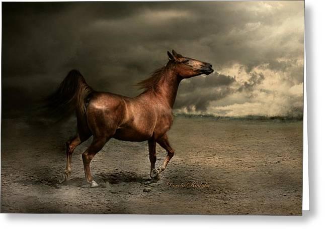 Horse Run Greeting Cards - Free Spirit Greeting Card by Dorota Kudyba