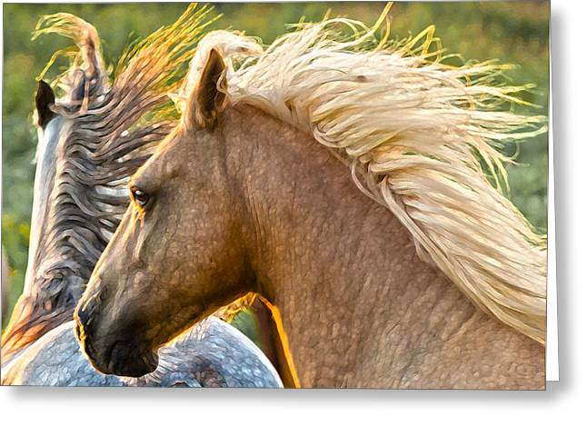Wild Horse Greeting Cards - Free Spirits Greeting Card by Ron  McGinnis