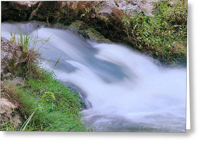 Freely Flowing Greeting Card by Kristin Elmquist