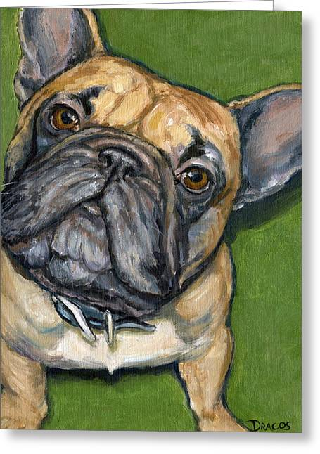 Draco Greeting Cards - French bulldog Looking Up on Green Greeting Card by Dottie Dracos