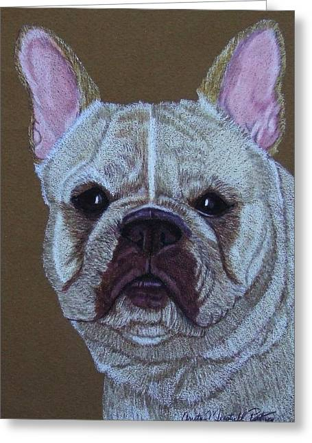 Toy Dog Drawings Greeting Cards - French Bulldog Vignette 2 Greeting Card by Anita Putman