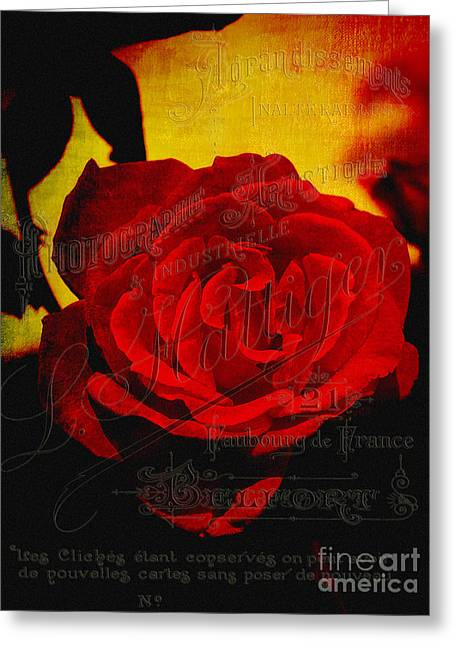 French Script Greeting Cards - French Rose Greeting Card by Karen Lewis
