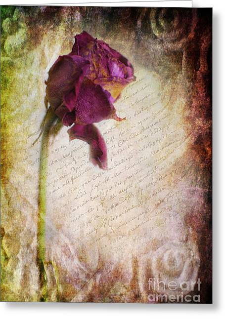 Love Letter Greeting Cards - French Rose Greeting Card by Yhun Suarez