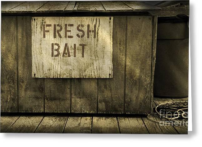 Rodanthe Greeting Cards - Fresh Bait - Rodanthe Fishing Pier  Greeting Card by Anne Kitzman