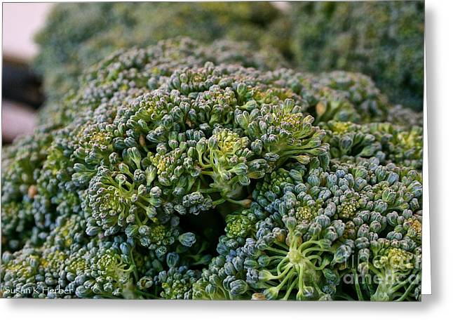 Minnesota Grown Photographs Greeting Cards - Fresh Broccoli Greeting Card by Susan Herber