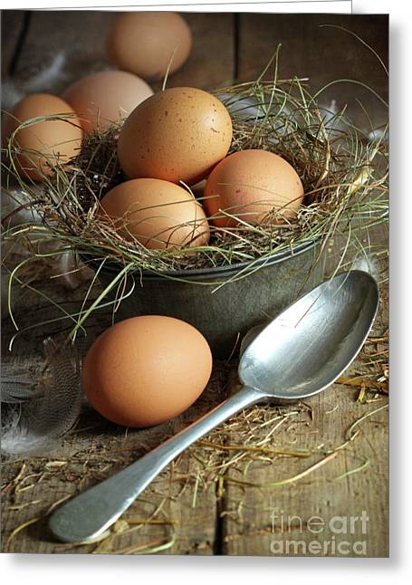 Background Greeting Cards - Fresh brown eggs in old tin container with spoon  Greeting Card by Sandra Cunningham