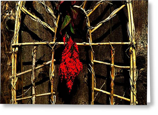 Trellis Greeting Cards - Fresh Cut Plume Greeting Card by Chris Berry
