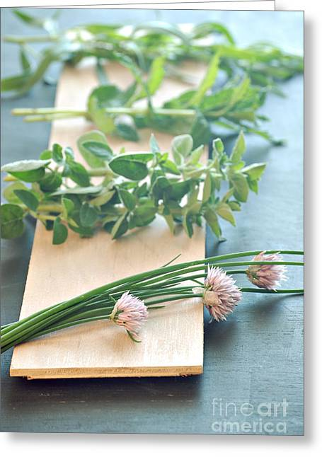 Green Chives Greeting Cards - Fresh Herbs Greeting Card by HD Connelly