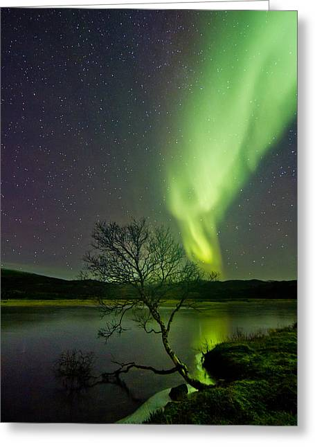 Photographing Aurora Greeting Cards - Fresh ice on the lake Greeting Card by Frank Olsen
