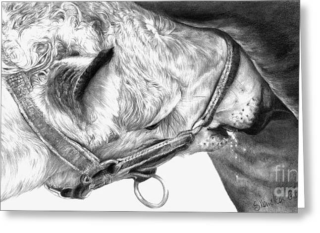 Equestrian Commissions Greeting Cards - Fresh Milk Greeting Card by Sheona Hamilton-Grant