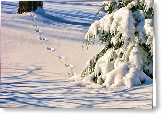 Snow Covered Landscape Greeting Cards - Fresh Snow Prints Greeting Card by Christopher Arndt