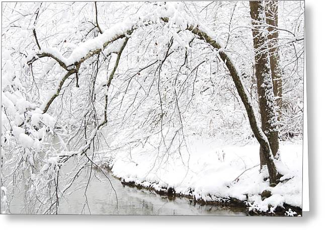 West Virginia Snow Scene Greeting Cards - Fresh Snowfall on the River Greeting Card by Thomas R Fletcher