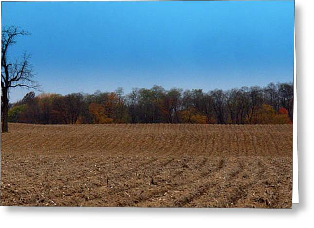 Indiana Autumn Greeting Cards - Freshly Tilled Greeting Card by Ed Smith