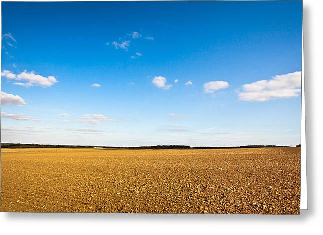 Till Greeting Cards - Freshly tilled field Greeting Card by Tom Gowanlock