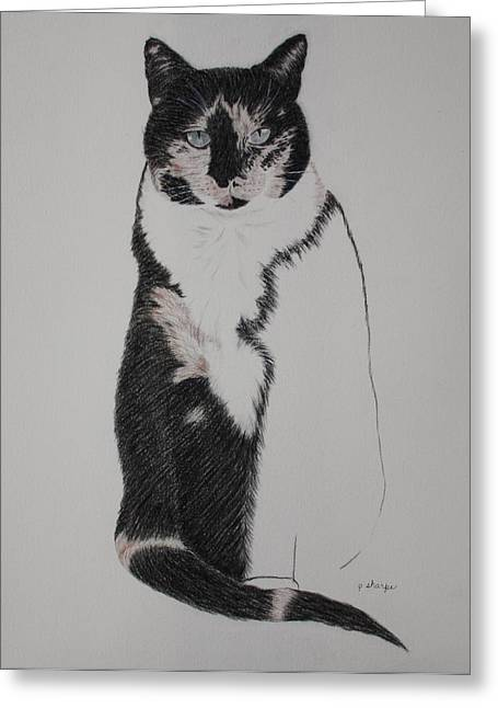 Spirit Cat Essence Greeting Cards - Friend II Greeting Card by Patsy Sharpe