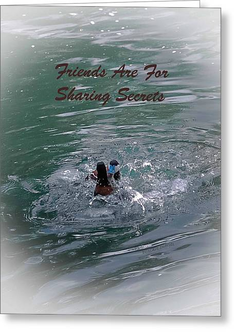 Swimmers Greeting Cards - Friends Are For Sharing Secrets Greeting Card by DigiArt Diaries by Vicky B Fuller