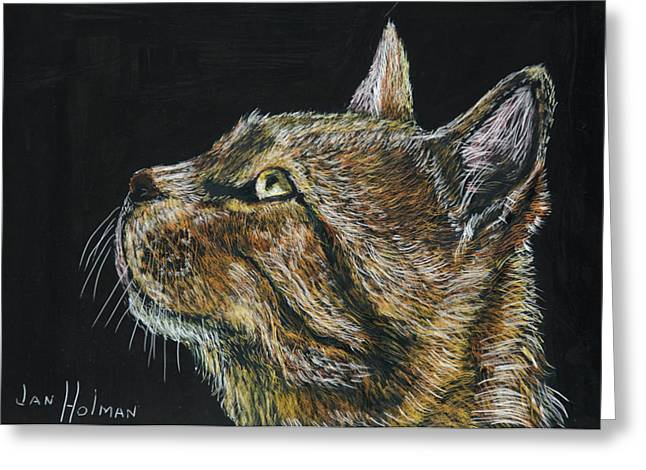 Kitten Tapestries - Textiles Greeting Cards - Friends Forever Greeting Card by Jan Holman