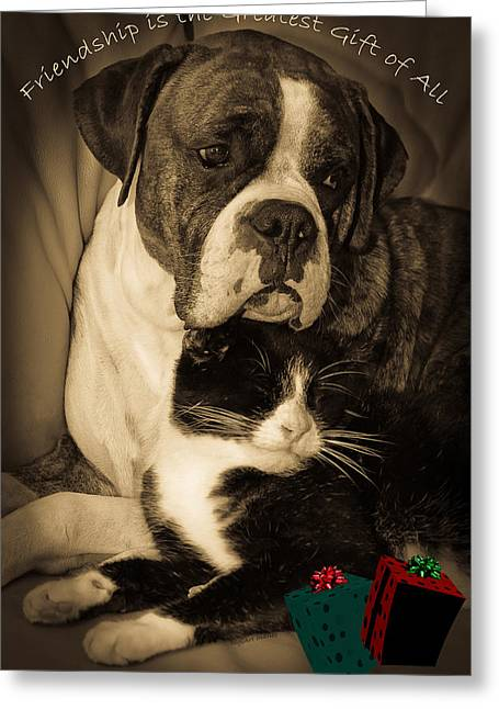 Christmas Greeting Photographs Greeting Cards - Friendship is the Greatest Gift of All Greeting Greeting Card by DigiArt Diaries by Vicky B Fuller