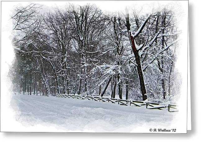 Bone Pile Greeting Cards - Frigid Greeting Card by Brian Wallace