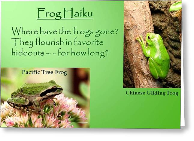 Pacific Tree Frog Greeting Cards - Frog Haiku Greeting Card by Laurel Talabere