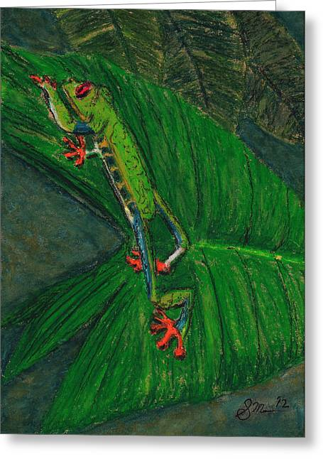 Amphibians Pastels Greeting Cards - Frog Greeting Card by Sean Mann