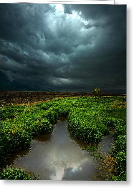 Geographic Greeting Cards - From Above Greeting Card by Phil Koch