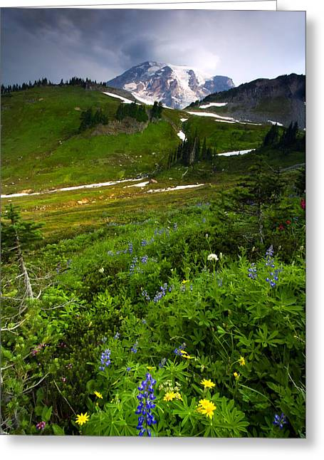 Mt. Rainier Greeting Cards - From the Top Greeting Card by Mike  Dawson