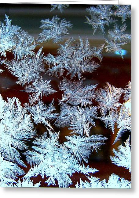 Dark Blue Greeting Cards - Frost Design Greeting Card by Shirley Sirois