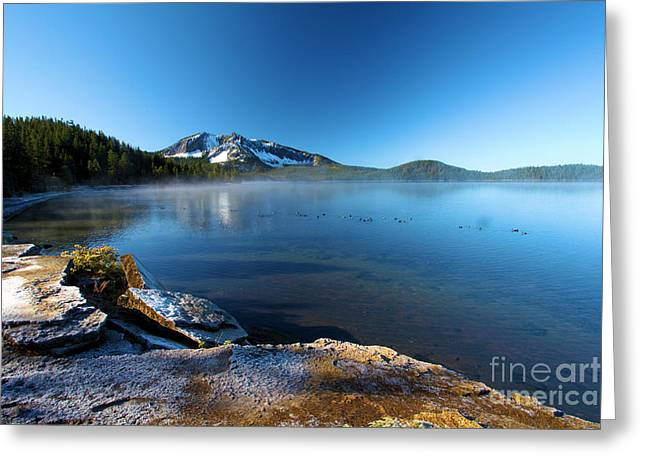 Newberry Greeting Cards - Frost On The Shore Greeting Card by Adam Jewell