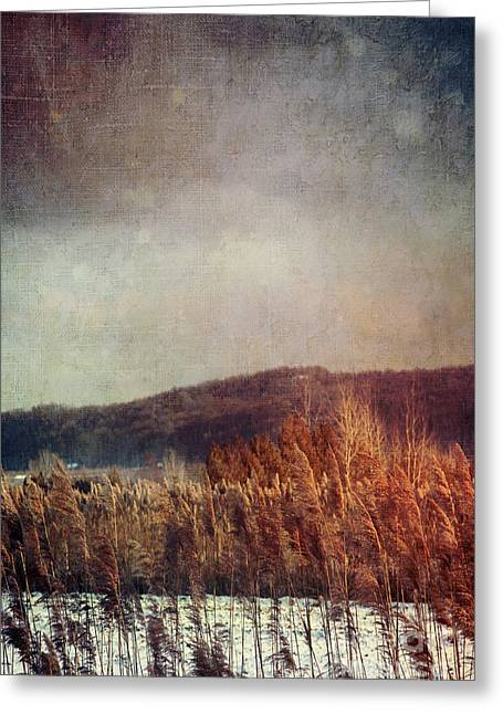 Snow Scenes Greeting Cards - Frosty field in late winter afternoon Greeting Card by Sandra Cunningham
