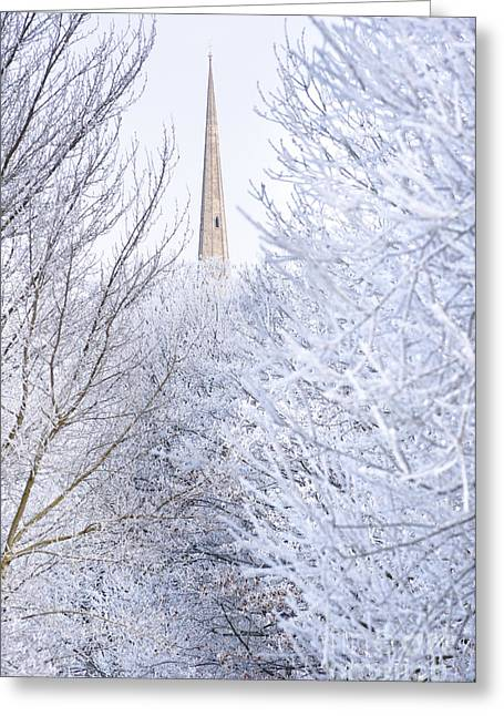 Snowy Day Greeting Cards - Frosty morning Greeting Card by Andrew  Michael