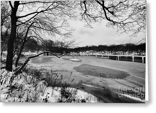 Central Park West Greeting Cards - Frozen Central Park at Dusk Greeting Card by John Farnan