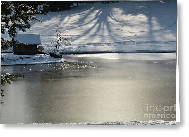 Coldly Greeting Cards - Frozen Lake Greeting Card by Bruno Santoro