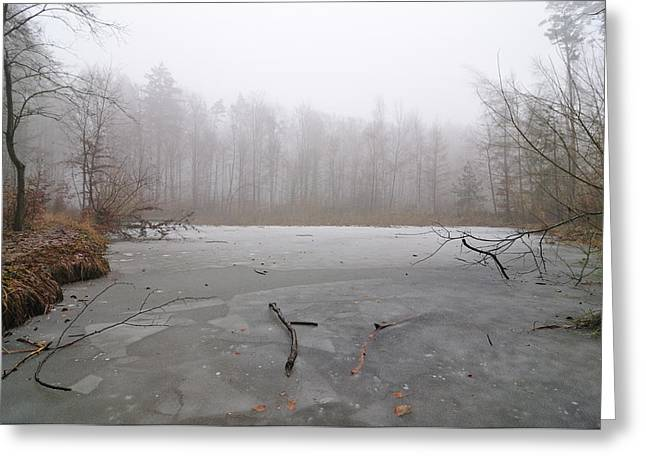 Pond In Park Greeting Cards - Frozen lake in winter Greeting Card by Matthias Hauser