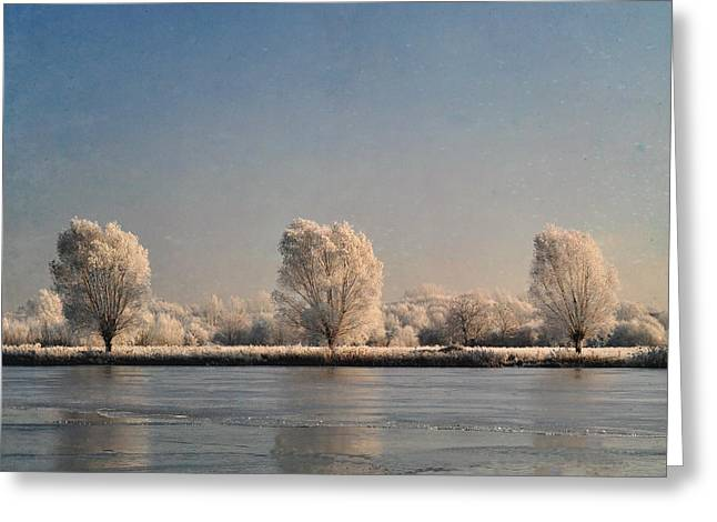 Lyn Randle Greeting Cards - Frozen Lake Greeting Card by Lyn Randle