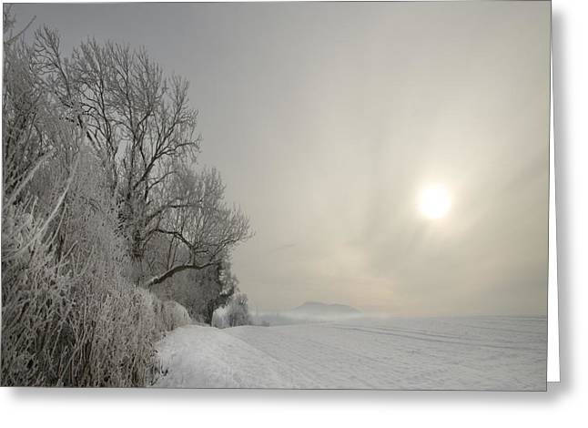 Foggy Day Greeting Cards - Frozen Landcape Greeting Card by Angel  Tarantella