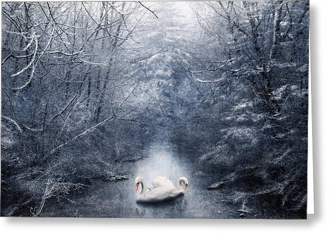 White River Mixed Media Greeting Cards - Frozen Time Greeting Card by Svetlana Sewell