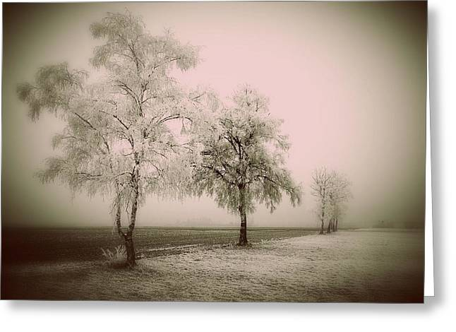 Prashant Ambastha Greeting Cards - Frozen Trees Greeting Card by Prashant Ambastha
