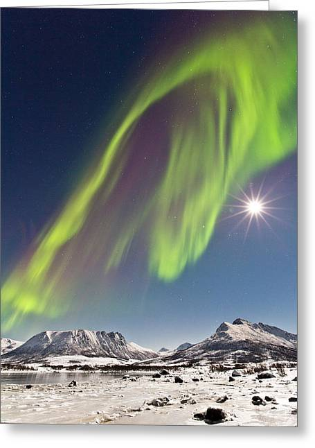 Sortland Greeting Cards - Frozen world Greeting Card by Frank Olsen