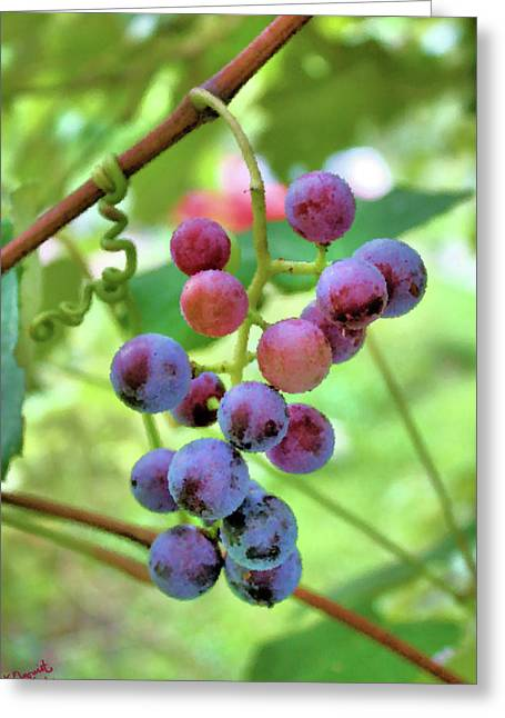 Concord Grapes Digital Art Greeting Cards - Fruit of the Vine Greeting Card by Kristin Elmquist