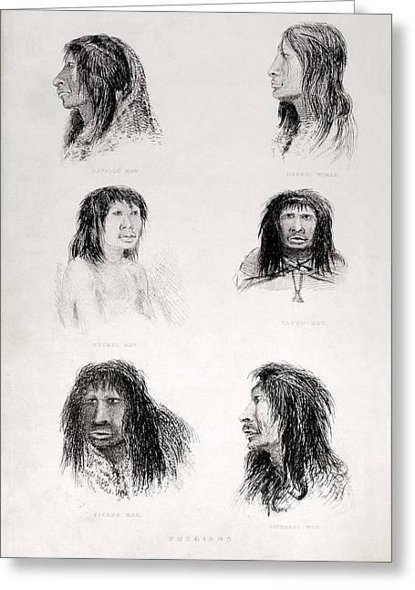 Beagle Artwork Greeting Cards - Fuegian Tribes - Fitzroys Beagle Portrt. Greeting Card by Paul D Stewart
