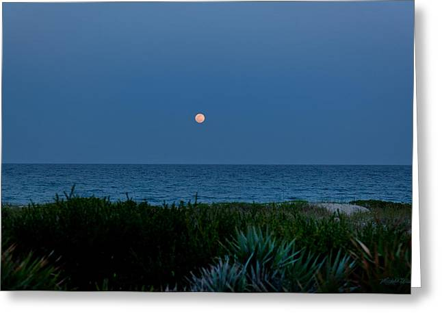 Florida East Coast Greeting Cards - Full Flower Moon Rising Greeting Card by Michelle Wiarda